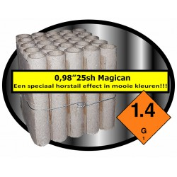 25 sh Magician